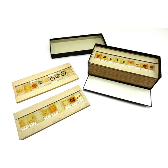 A large quantity of microscope slides,... Image