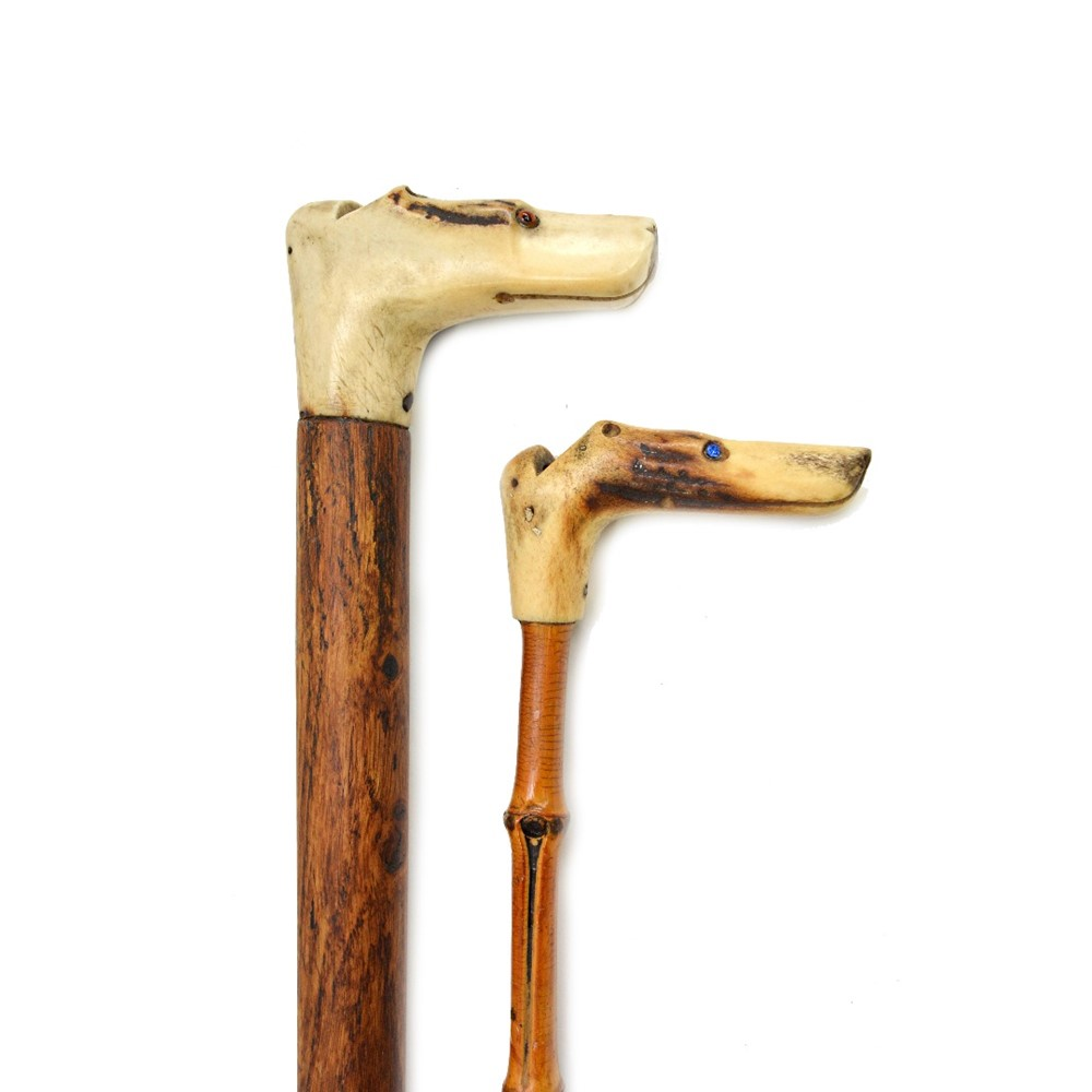 A carved horn 'dog's head' walking stick... Image