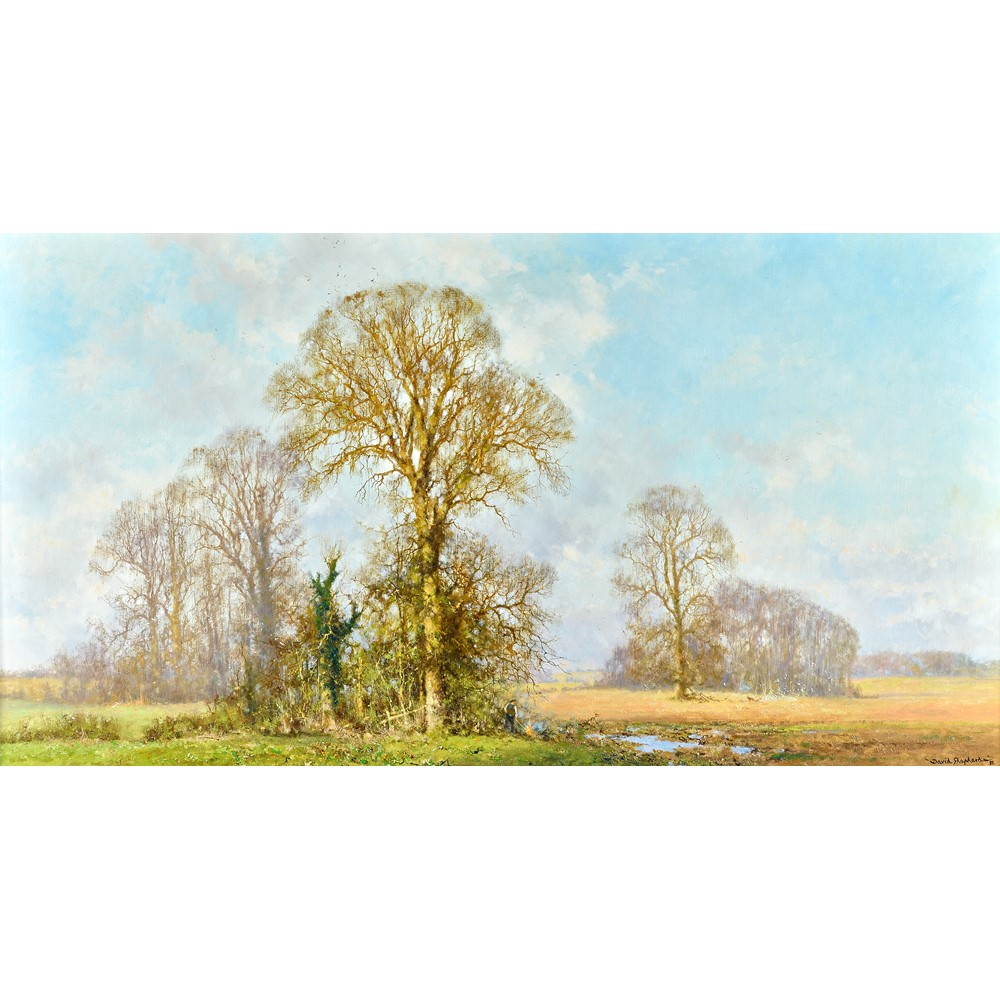 David Shepherd (1931-2017), Autumnal landscape, oil on canvas, signed and dated '92, 64.5cm x... Image