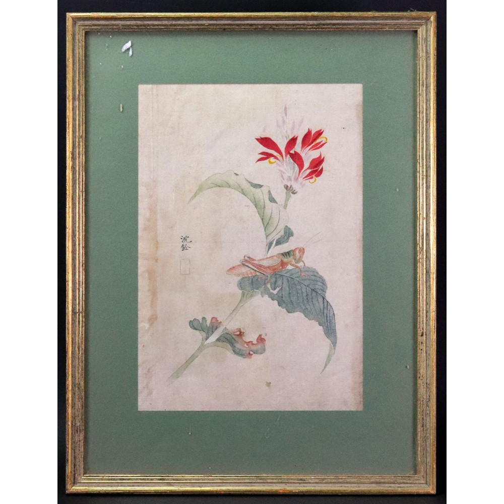 A Japanese watercolour of a grasshopper on a leaf Image